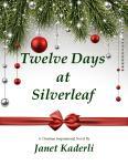 12 days novel official cover jpeg